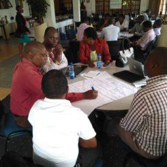 Participants at a health advisory development meeting